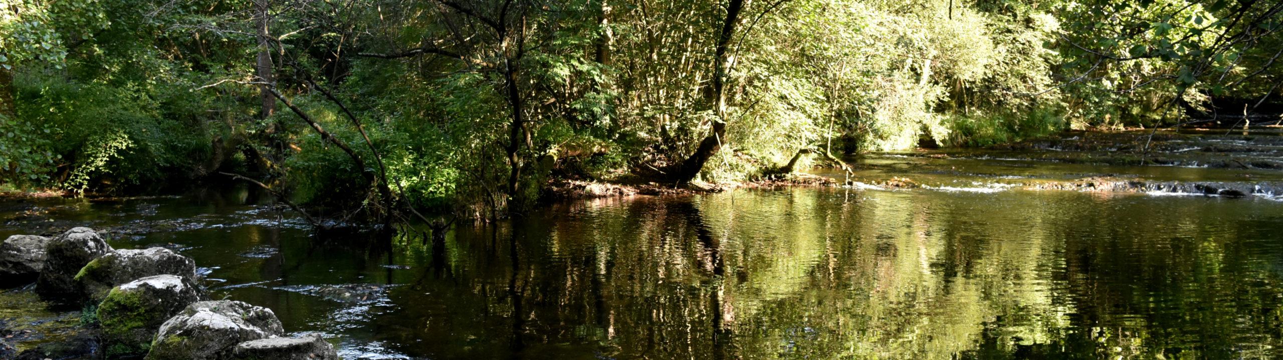 Río Clarín / Clarin River